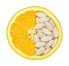 Vitamine B & C